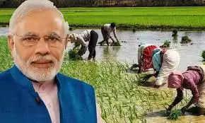 केंद्र सरकार ने किसानों को राहत देते हुए खाद पर बढ़ाई सब्सिडी